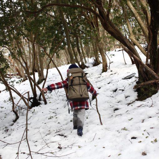 雪山ハイキング